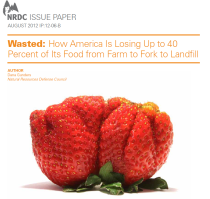 Wasted: How America Is Losing Up to 40 Percent of Its Food from Farm to Fork to Landfill