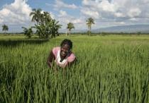 Haiti-Oxfam