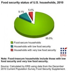 Hunger Stats 12010