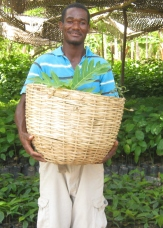 TTFF_SFA farmer getting trees-1