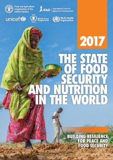 FAO 2017 Food Security Report Cover